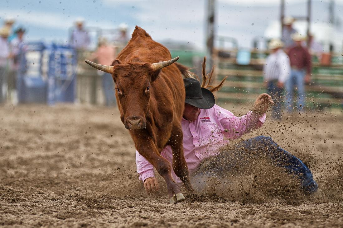 Montana rodeo photography