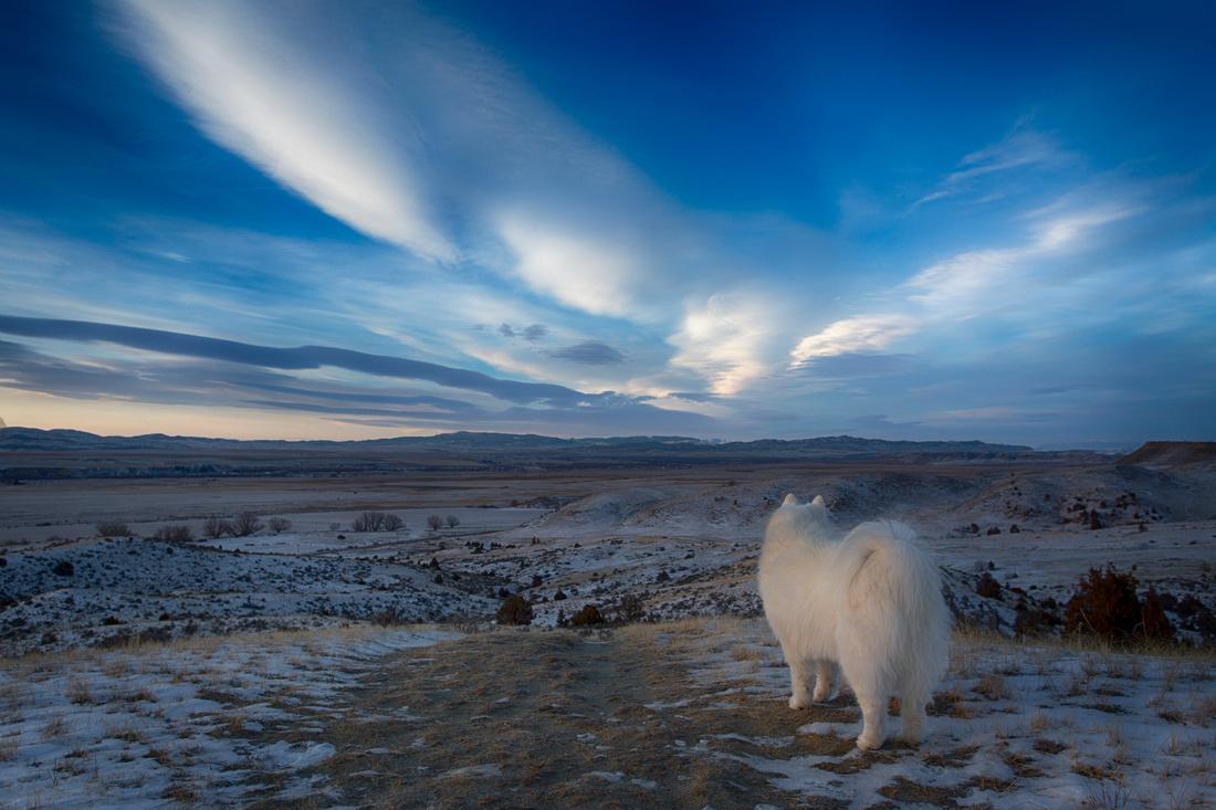 Montana Landscape Photography